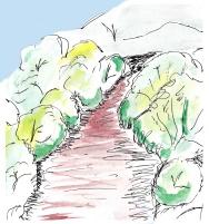 sketch. 2