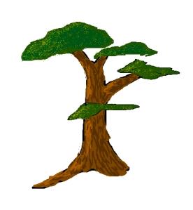 tree-2017